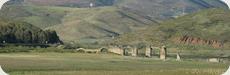 Cañaveral